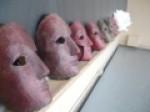 Centre d'étude masque et mouvement