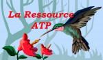 La ressource ATP
